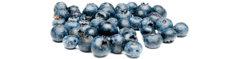 image pint of blueberries