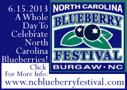 image: North Carolina Blueberry Festival