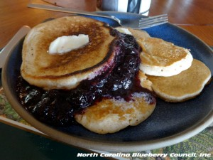 image: blueberries with a side of pancakes