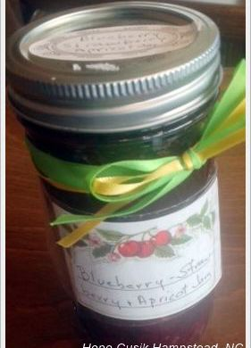image: blueberry strawberry apricot jam by Fay Hope Cusick