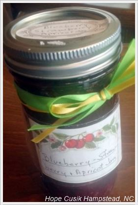 Blueberry Strawberry Apricot Jam