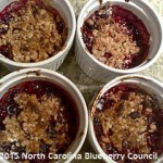 "image"" Delicious Gluten Free & Dairy Free Blueberry Fruit Crisp"