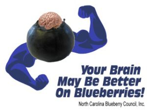 Studies support blueberries are good for your brain
